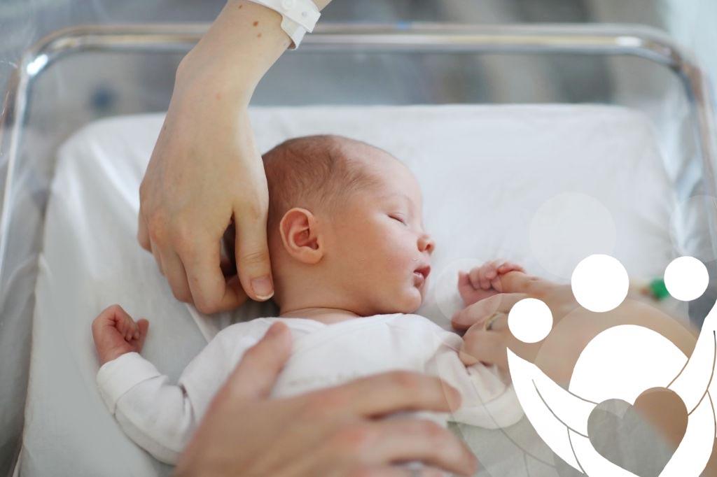 exito subrogacion fertilidad