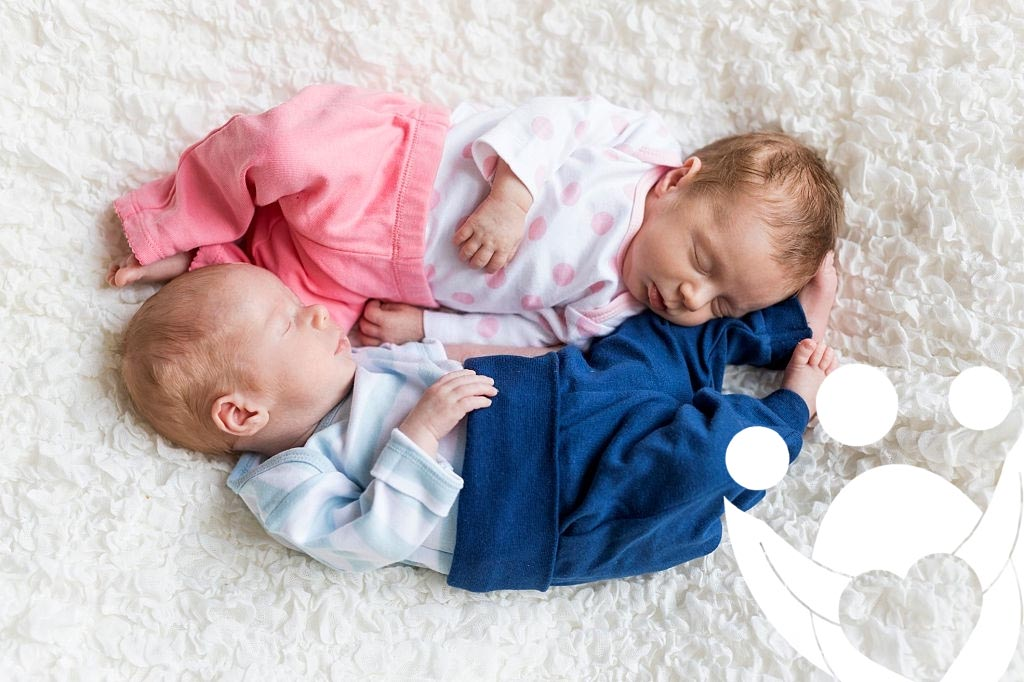 gemelos bicigoticos fertilidad
